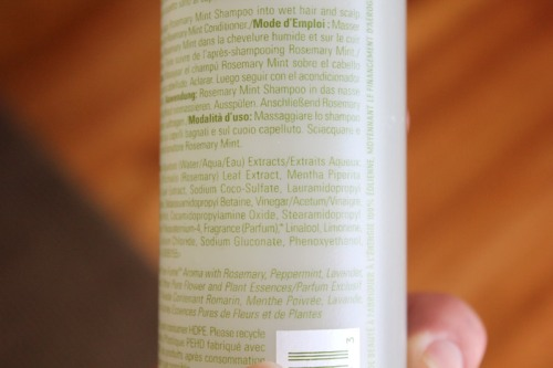 Aveda Rosemary Mint Shampoo Ingredients List Caulfield's Counter Haircare Hair Dandruff Cooling Men Women 02
